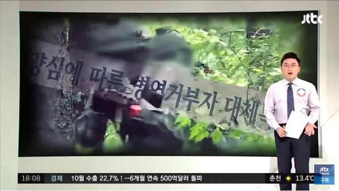 대법원, 양심적 병역거부 '무죄 판결' 논란